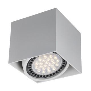 ZUMA LINE Lampa wewnętrzna Spot BOX 1, ACGU10-114 white, biały.