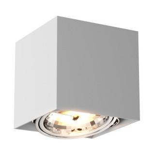 ZUMA LINE Lampa wewnętrzna Spot BOX SL 1, 89947-G9 white, biały.